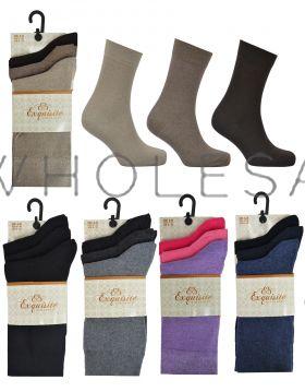 2499_2500 Ladies Plain Cotton Socks