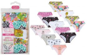 14c907 Younger Girls 5 Pack Briefs 12 Packs Of 5 Pairs